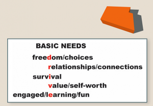 Basic Needs William Glasser