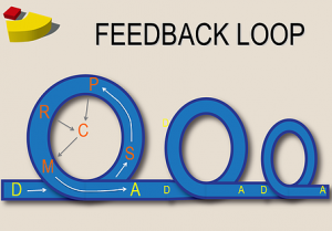 Feedback Loops Perception Control Theory